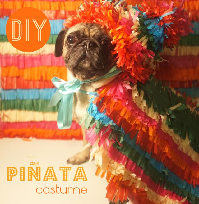 DIYPINATA costume