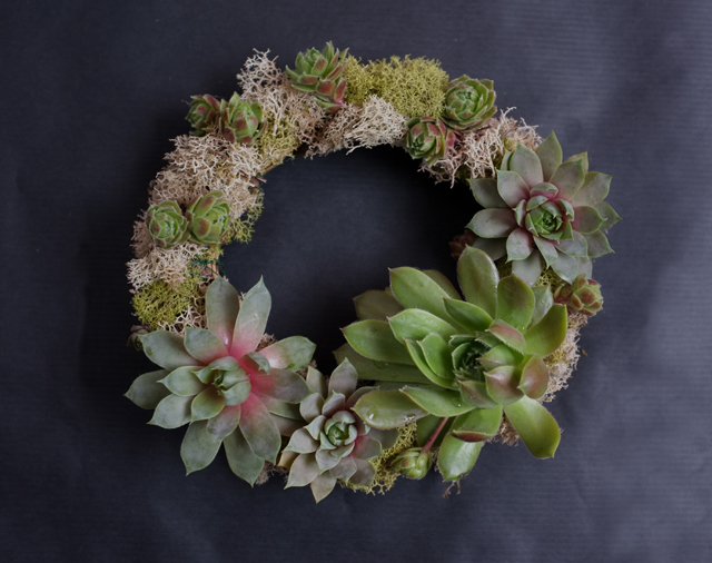 Succulent Wreath_small