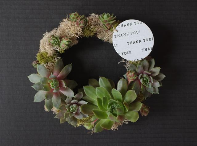 succulent wreath gift