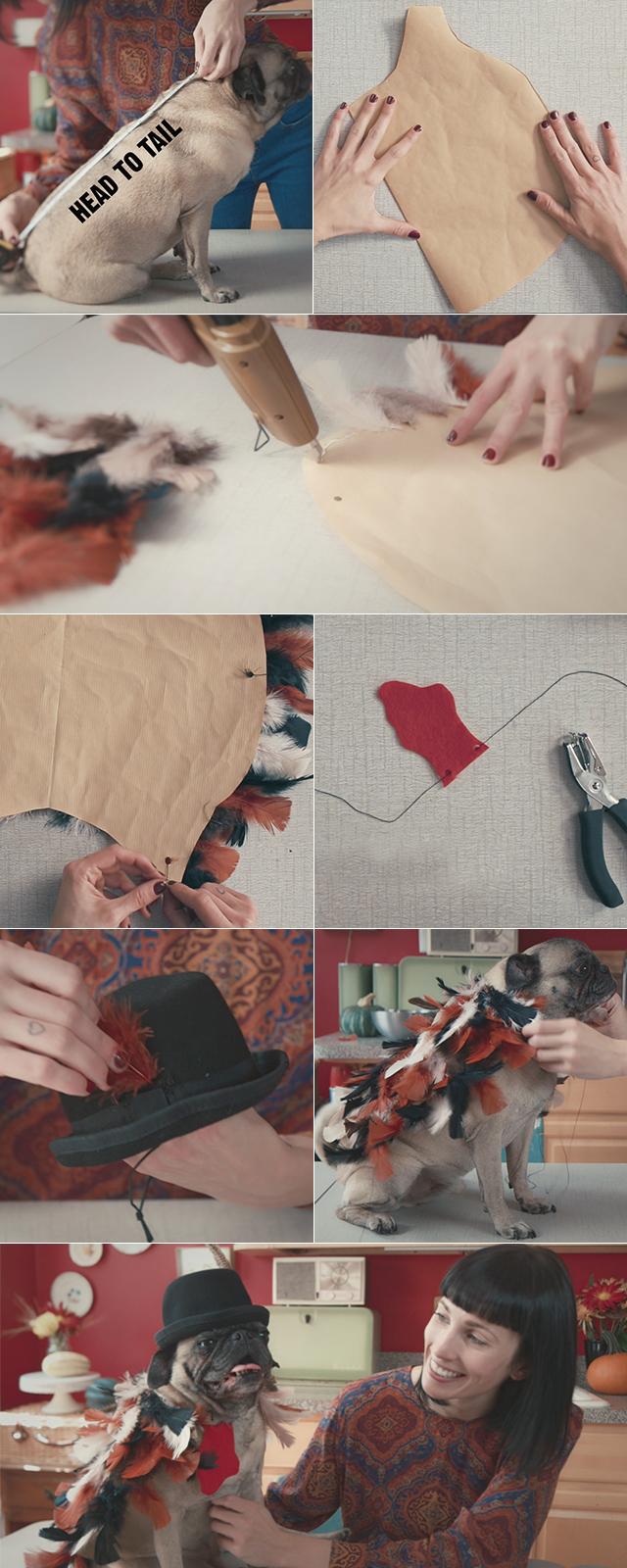 Turkey Dog Costume DIY