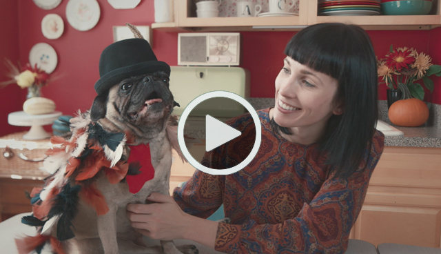 Turkey Dog Costume Play Video