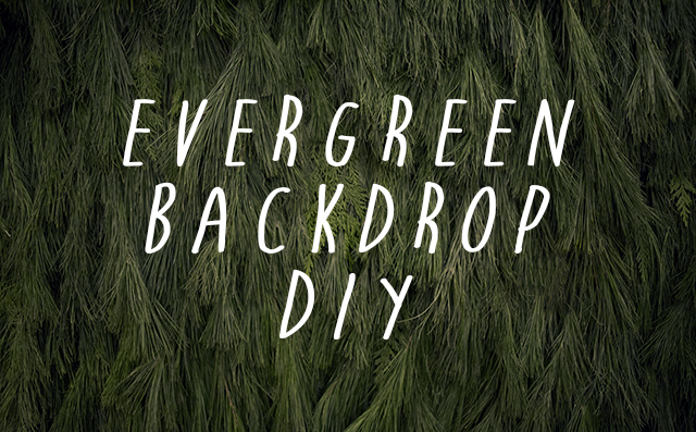 EVERGREEN BACKDROP DIY