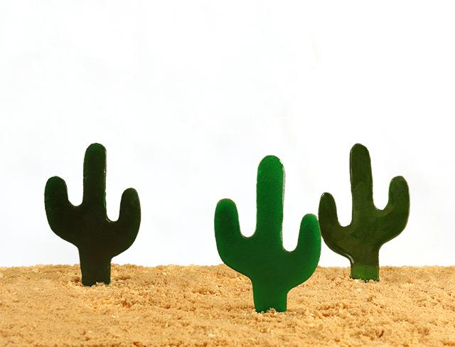 cactus candies