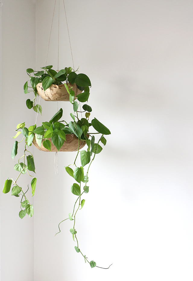 DIY Hanging Planter