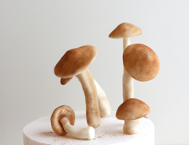 Sugar Mushrooms