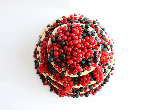 Cake with Currants 2