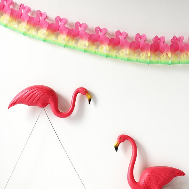 Friday Flamingos