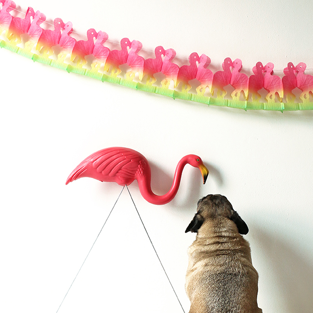 Pug and Flamingo