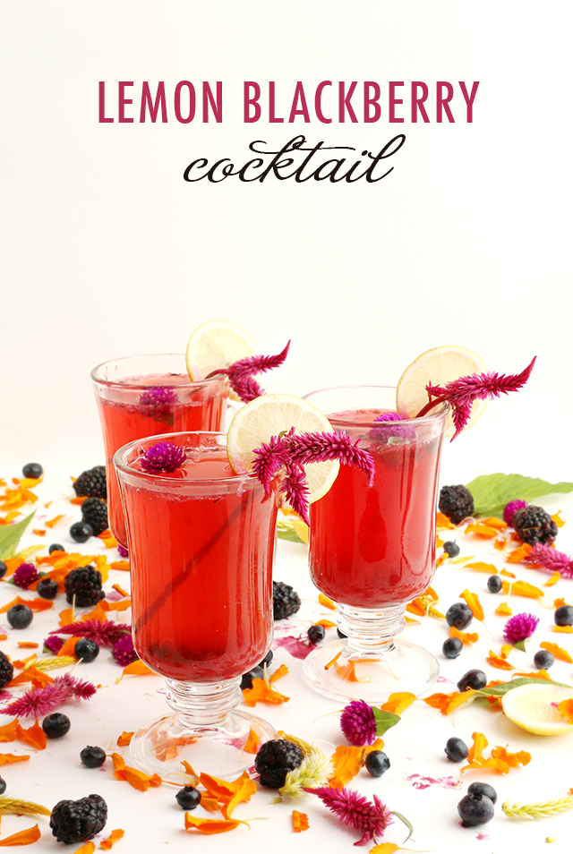 LEMON BLACKBERRY COCKTAIL RECIPE
