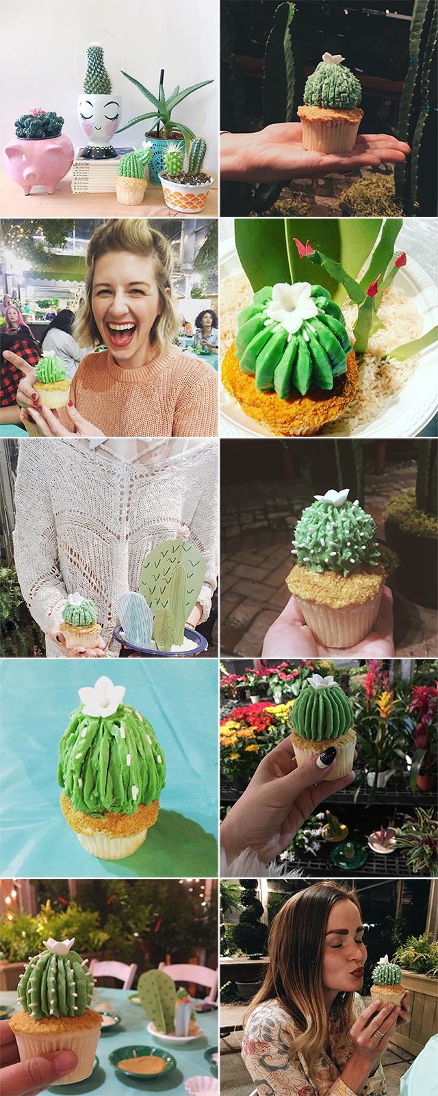 cactuscupcakes