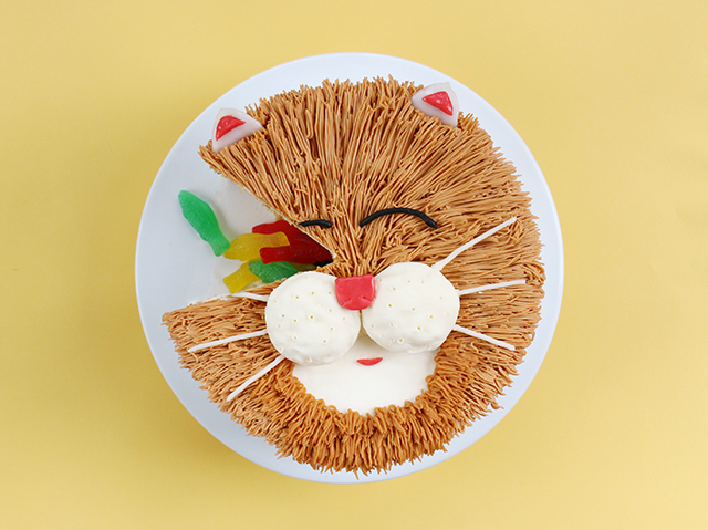 CatCake_FoodNetwork