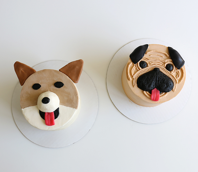 Cute Pug and Corgi Cake Tutorials